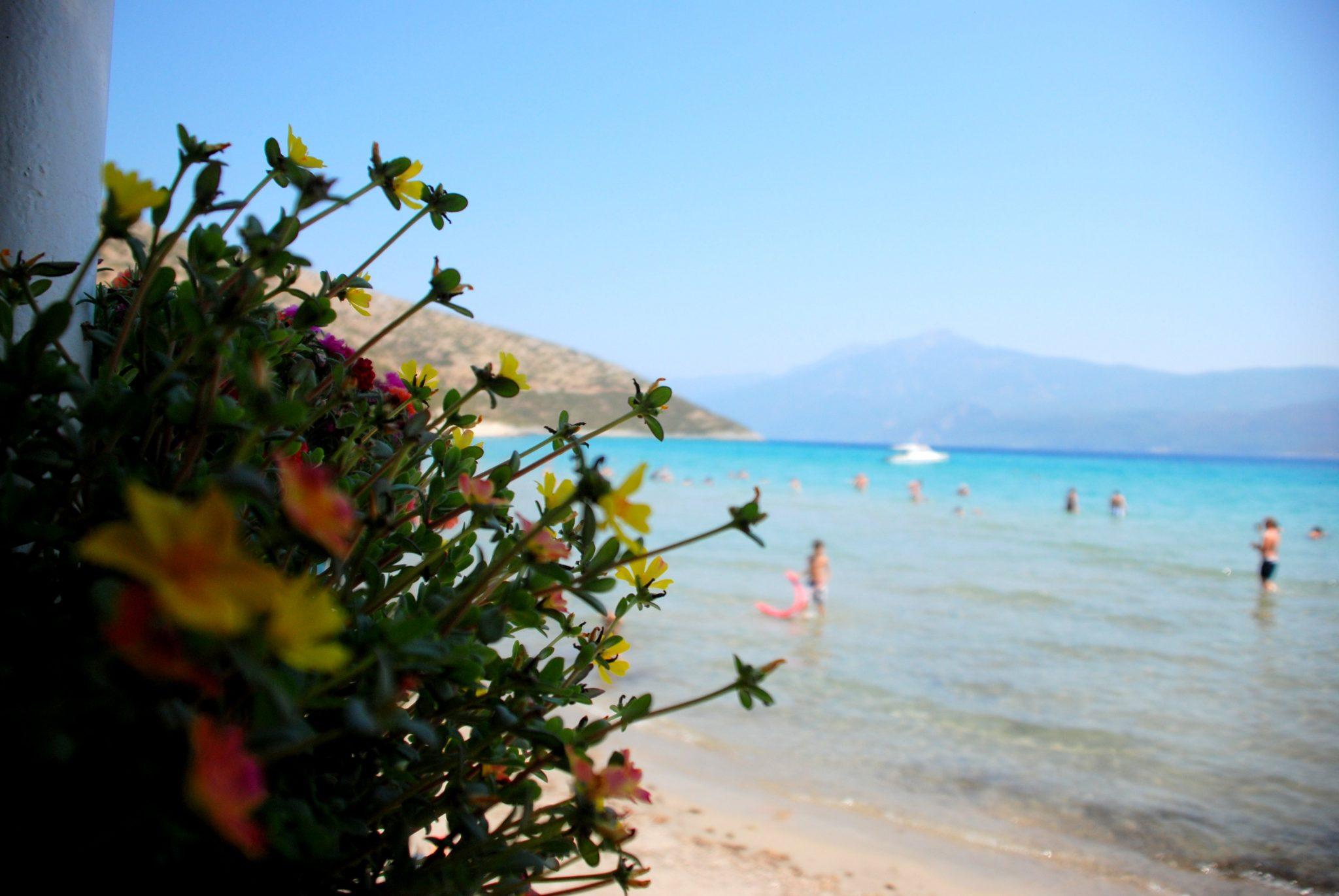 Samos'a gitsek ya :)